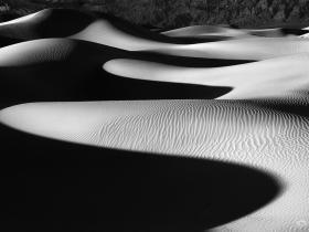 主题摄影大赛获奖作品自然类第二名 《共存》